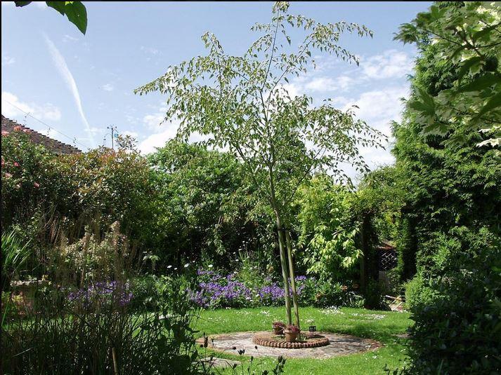 Gardens at self catering Ledbury